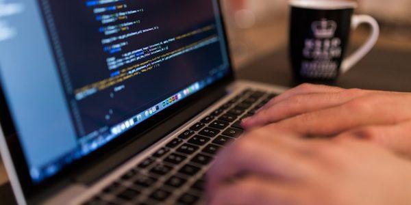 webbutveckling wordpress